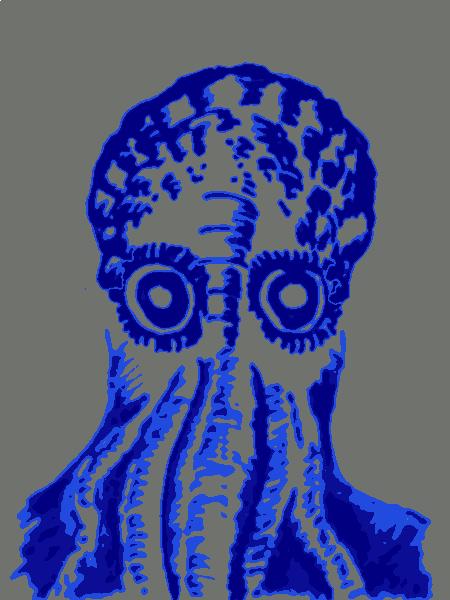Squid Faces
