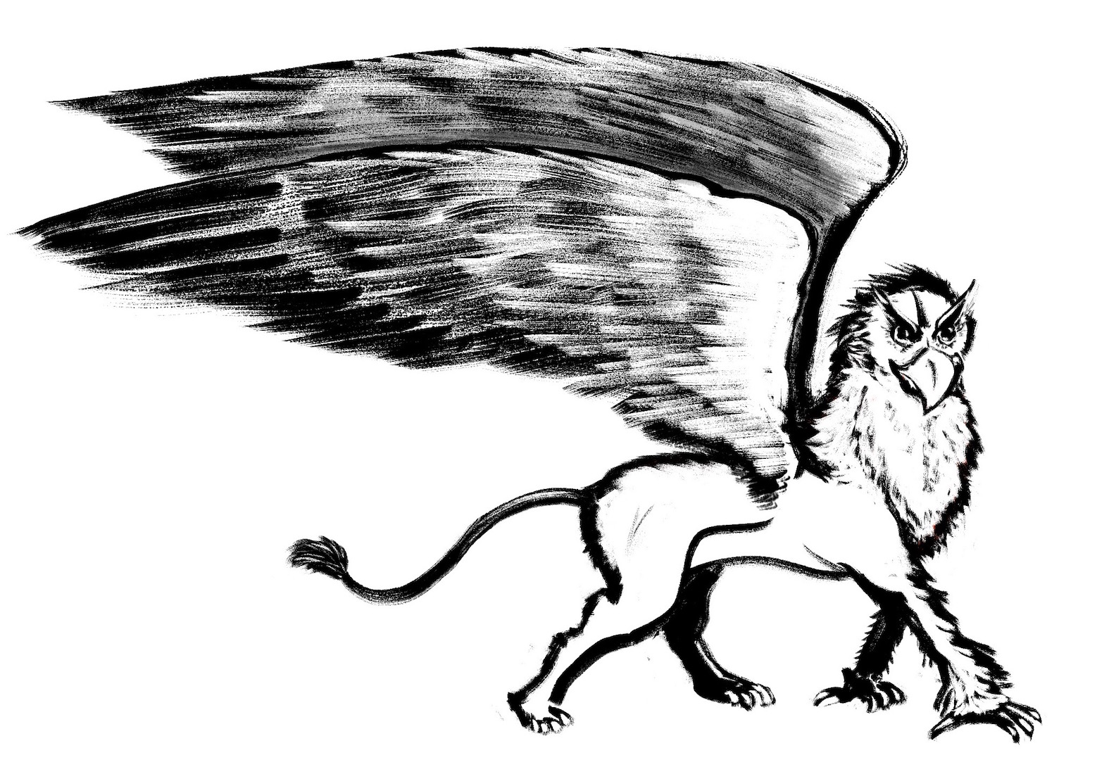 Gryphon (Picture)