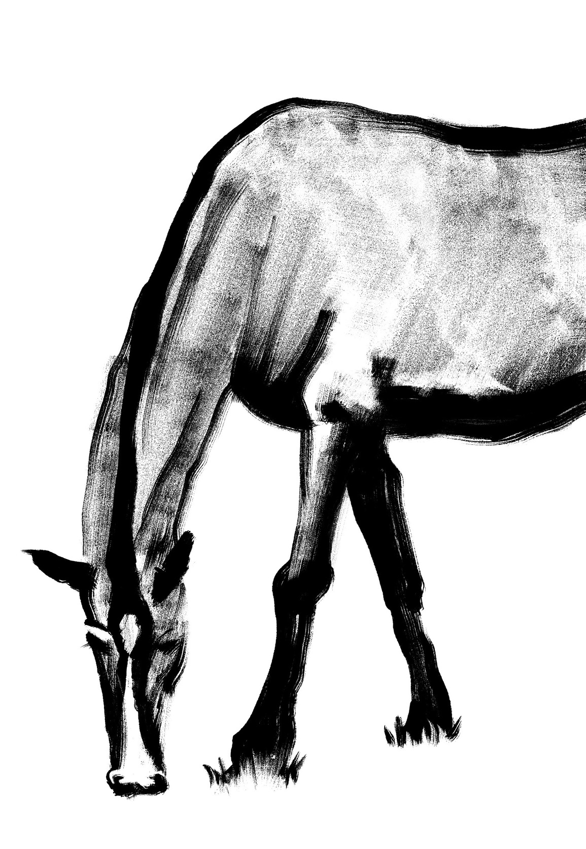 Horse (Picture)