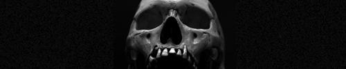 Banner-Skull-01.jpg