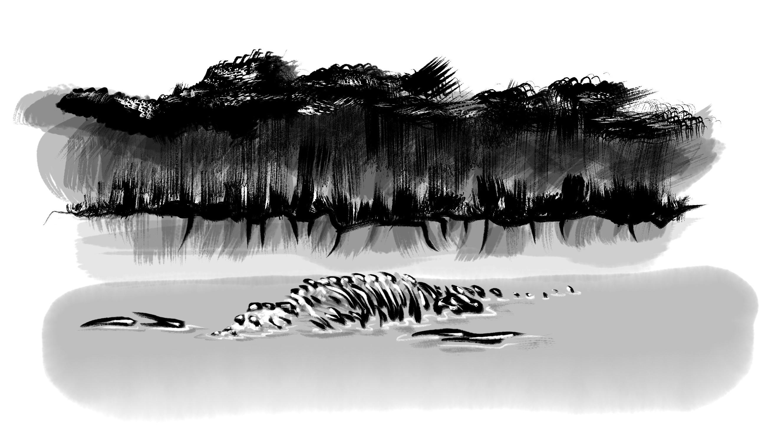 Die Knochen im See