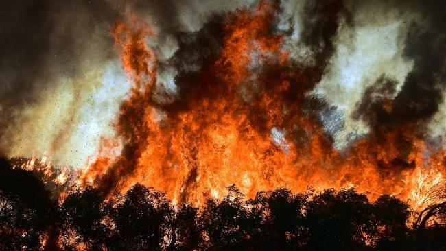 Der Feuerzirkel von Rottesheim Bild 2